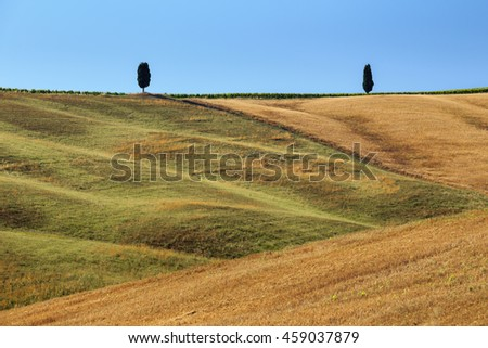 Field after harvest in Italy.
