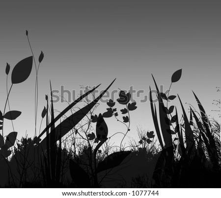 field against night sky - stock photo
