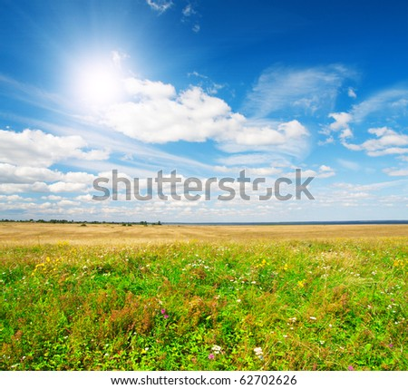 field and blue sky with sun - stock photo