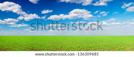 Field and cloudy sky. Agricultural composition