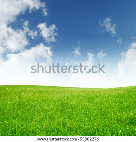 Field and sky with clouds. Summer landscape - stock photo