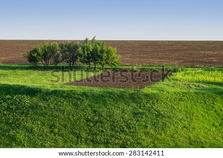 field and the earth, sky and grass, nature landscapes in the country - stock photo
