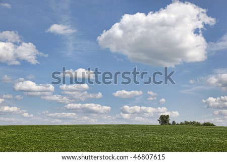 Field and trees with expanse of puffy clouds and blue sky on a midwestern farm - stock photo
