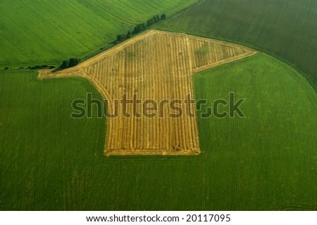 Field arrow - stock photo