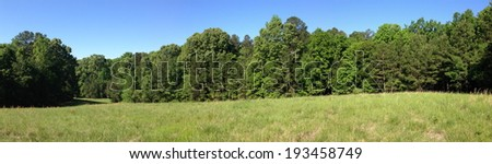 Field at the University of Mississippi Field Station - stock photo