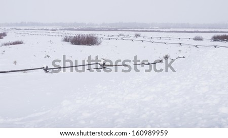 Field covered with snow at the Great Teton national park.