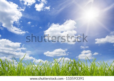 field green grass isolation on the sky backgrounds - stock photo