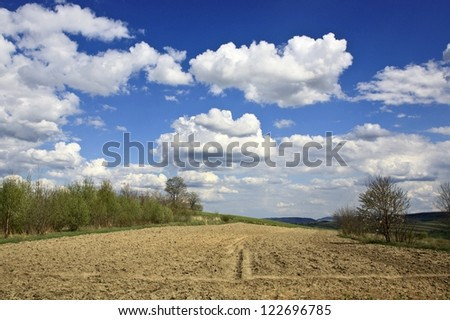 Field in Carpathian Mountains