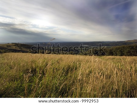 Field in countryside landscape - stock photo