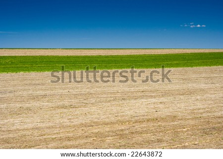 Field in the Rural Pennsylvania - stock photo