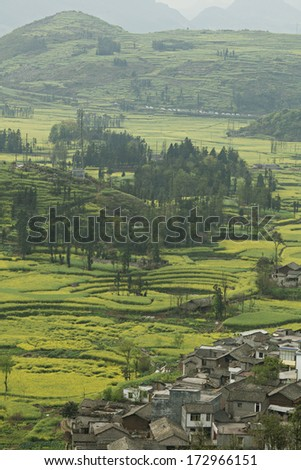 Field landscape in rural China