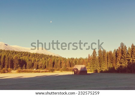 Field landscape on spring season - stock photo