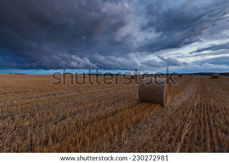 Field landscape with storm