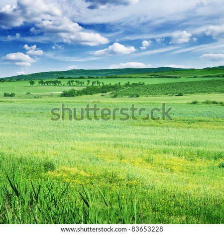 Field, mountains and blue sky - stock photo