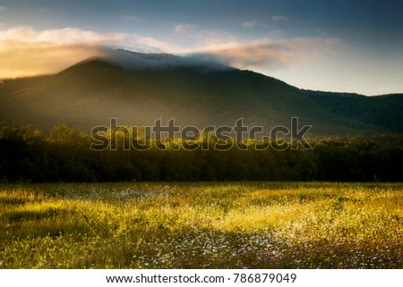 Field, mountains and evening