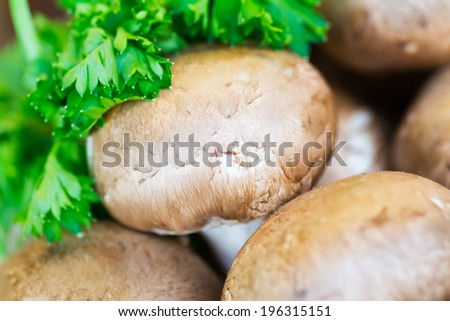 Field mushrooms for sale on blur green background macro - stock photo