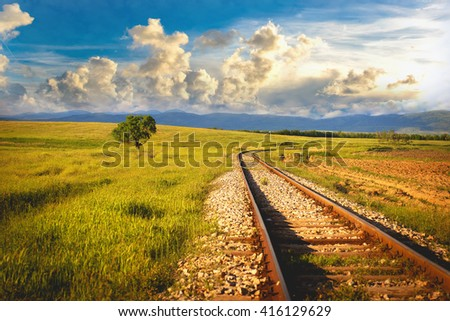 field of a tree and railroad