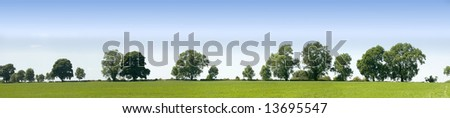 field of crops with trees behind - stock photo