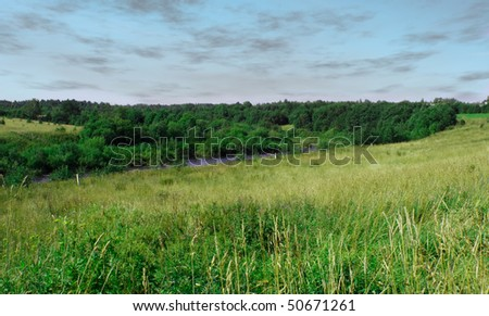 Field of fresh grass under blue sky