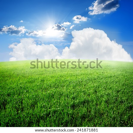 Field of fresh green grass and blue sky - stock photo