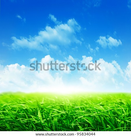 Field of fresh green grass and bright blue sky. - stock photo