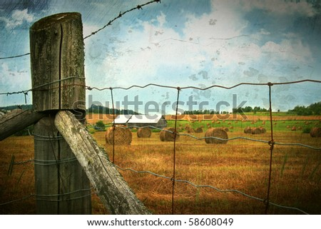 Field of freshly cut bales of hay in late July - stock photo