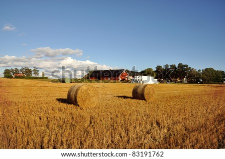 Field of freshly cut bales of hay with a red barn and farmhouse in the background. - stock photo