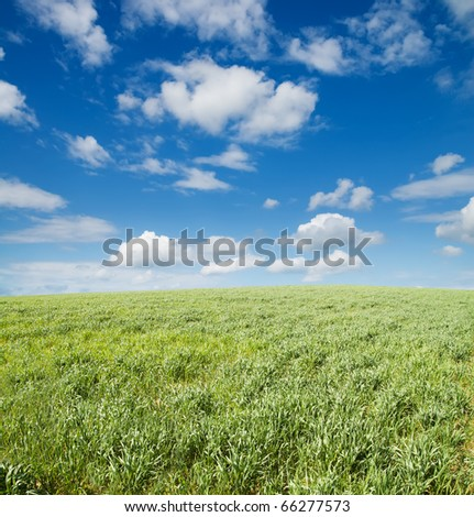 field of grass and cloudy sky - stock photo