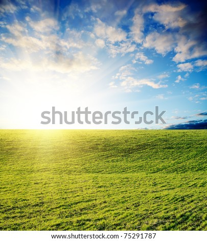 field of grass and cloudy sky on sunset - stock photo