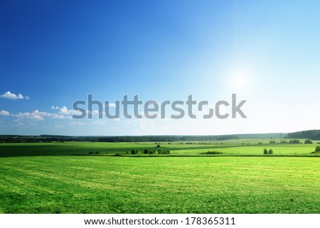 field of grass and forest - stock photo