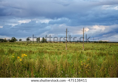 field of grass and perfect sky / field of grass and perfect sky / Empty countryside road through fields with wheat / field on a background of the blue sky