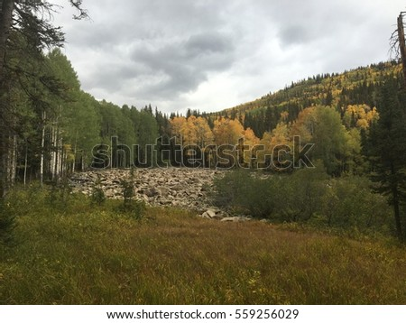 Field of grass and rocks with aspens and mountains in background