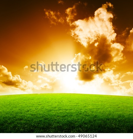 field of grass and sun - stock photo