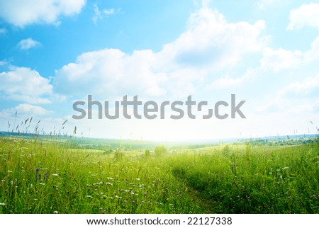 field of grass and village