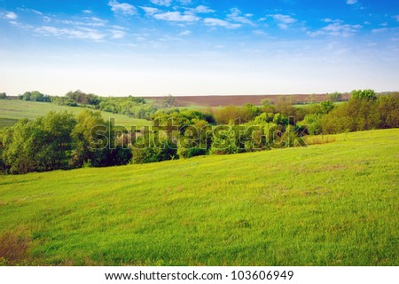 Field of grass,blue sky and sun. - stock photo
