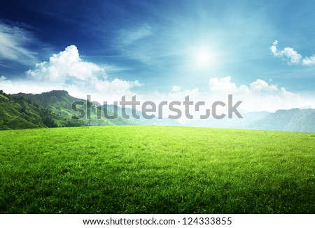 field of grass in  mountain - stock photo