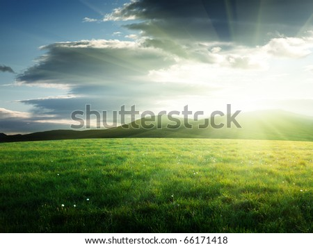 field of grass in north mountain - stock photo