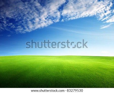 field of grass in sunset time - stock photo