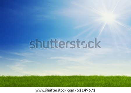 field of grass with sun beams