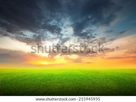 Field of green grass and beauttiful sky at sunset or sunrise - stock photo