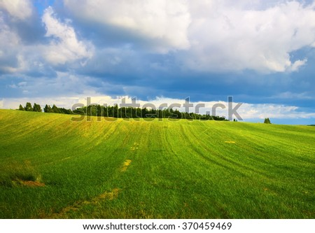 Field of green grass and cloudy sky. Meadow on a sunny summer day. Scenic rural landscape. - stock photo