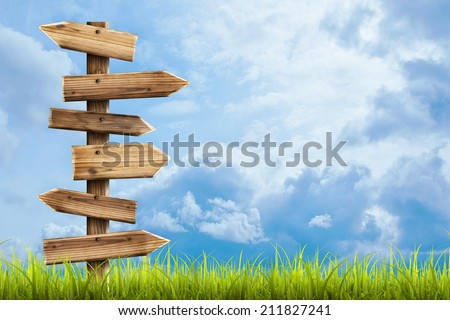Field of green grass and sky with Wooden sign arrows High resolution 3d  - stock photo