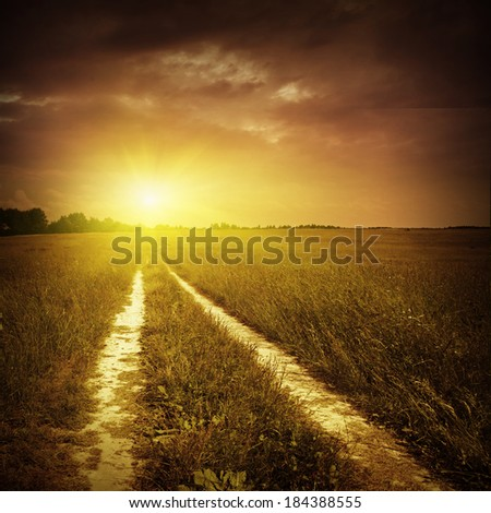 Field of green grass with road in grunge and retro style.