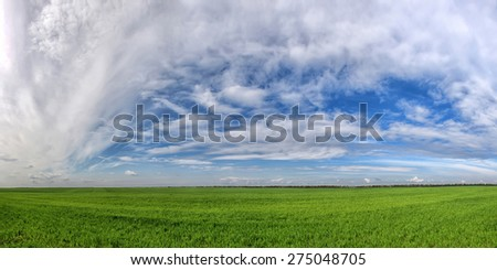 Field of spring grass and beautiful sky with clouds - stock photo