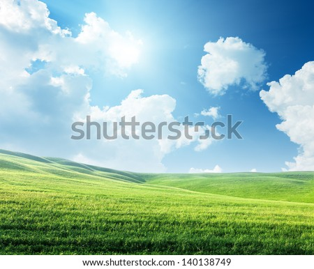 field of spring grass and sunny day - stock photo