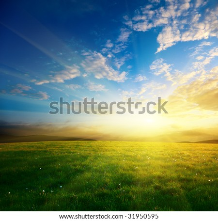 field of spring grass and sunset - stock photo
