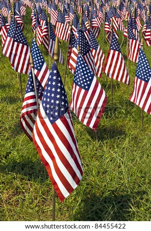 Field of US Flags with one flag isolated in the foreground - stock photo