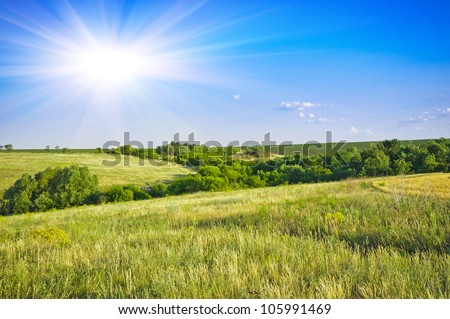 Field of wheat,  evening sky and sun. Sunset. Green planet - Earth - stock photo