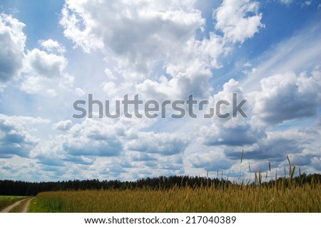 field road on a background of blue sky with clouds - stock photo