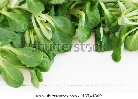 Field salad with copy space on a white wooden board. - stock photo